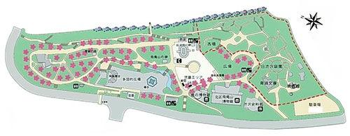 飛鳥山公園マップ