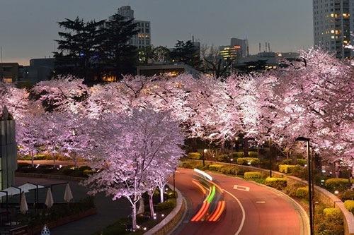 東京ミッドタウン ライトアップ