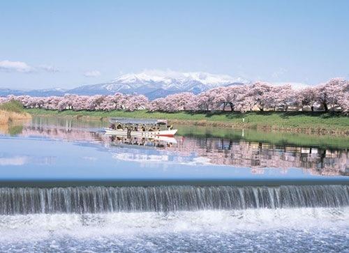 一目千本桜の絶景写真掲載