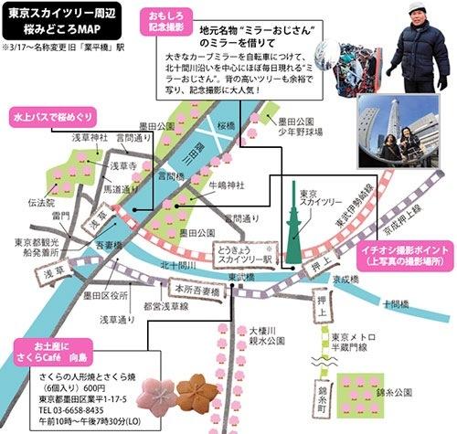 隅田公園の桜みどころMAP