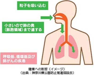pm2.5の危険性