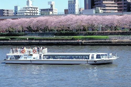 隅田川公園桜まつり 水上バス