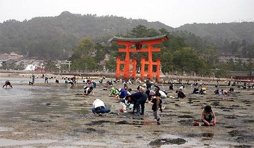 広島 無料潮干狩り スポット2