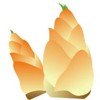 takenoko-akunuki