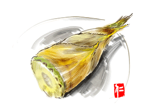 米ぬか以外でも竹の子はあく抜きできる