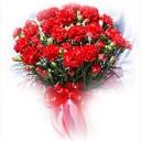 carnation-naze