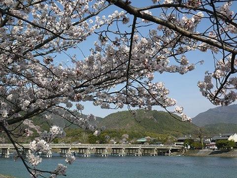 修学旅行 京都おすすめスポット7