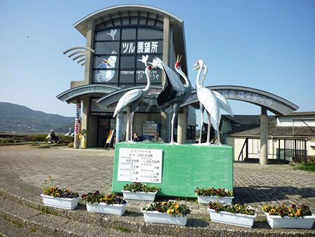 鹿児島県 ツル観察センター