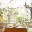 tokyo-hanami-rset