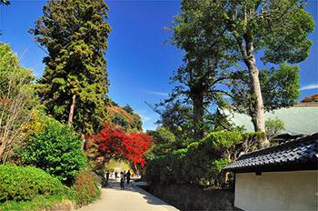 鎌倉:建長寺