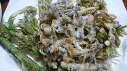 藤の花天ぷらレシピ