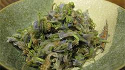 藤の花お浸しレシピ