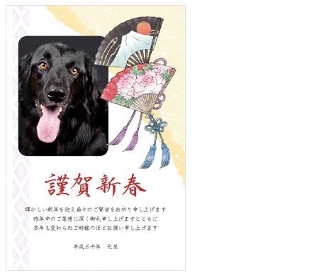 犬の写真入り年賀状完成2