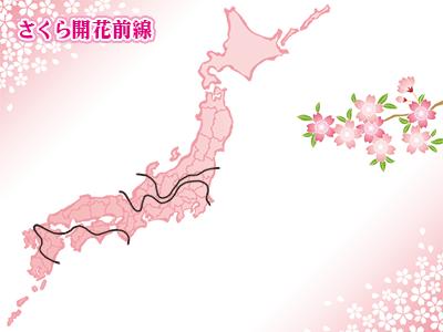 桜の開化予想に役立つのが毎年発表される桜前線です。