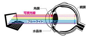PCを長時間使う人はブルーライトカットのメガネで青い光を遮ること