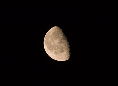 注目するのが月齢
