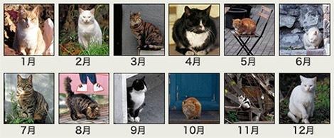 カレンダー収録写真