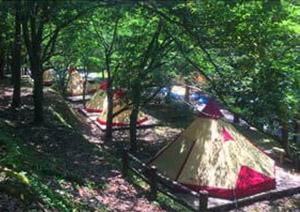 岩屋公園キャンプ場(鹿児島県・南九州)