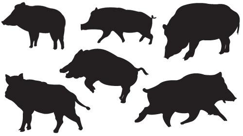 フリーベクター猪のイラスト