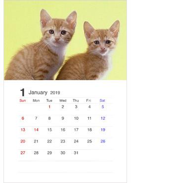 自分の好きな猫の写真を入れるのもオススメ