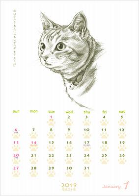 実際のネコをデッサンしているのでリアルなイラストが特徴