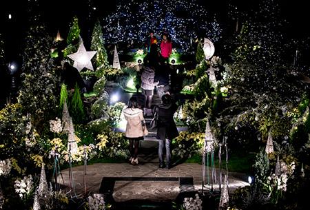 ランキング第3位:光と花のページェント クリスマスフラワーショー