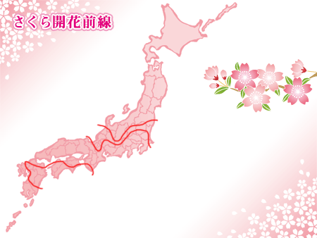 桜の花見に役立つのが毎年発表される桜前線