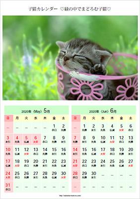 かわいい子猫の可愛いベストショットだけを集めたカレンダー