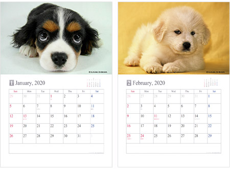 子犬の写真カレンダー